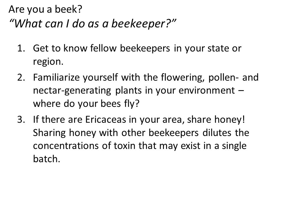 Are you a beek.