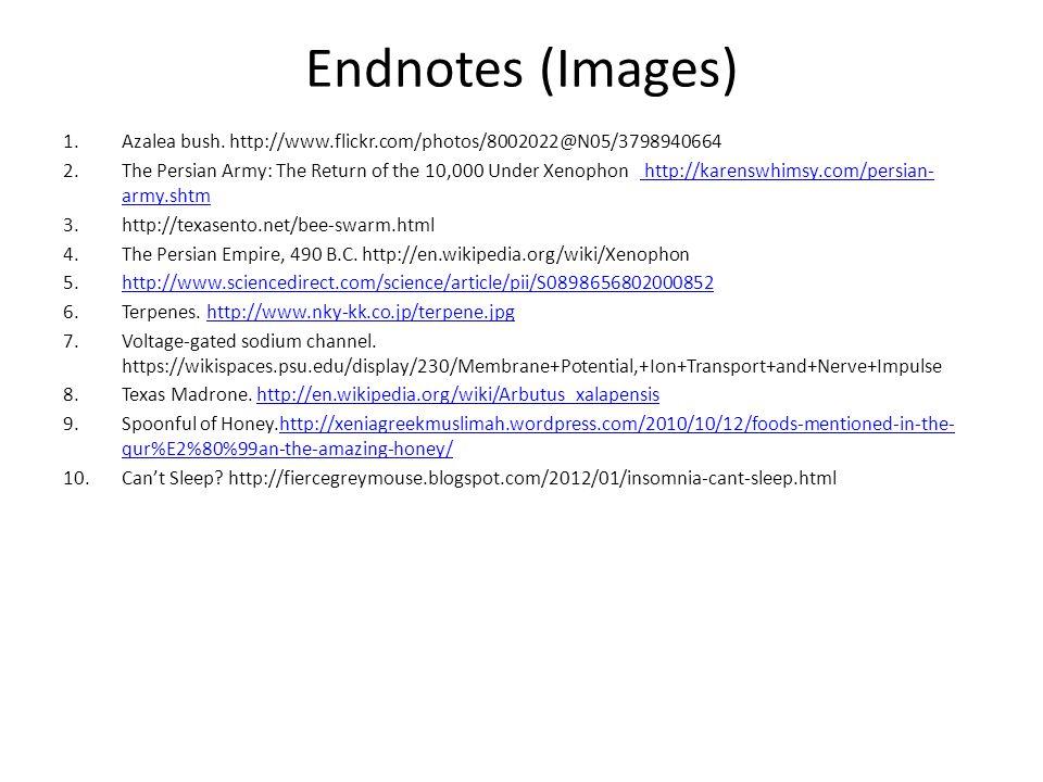 Endnotes (Images) 1.Azalea bush.