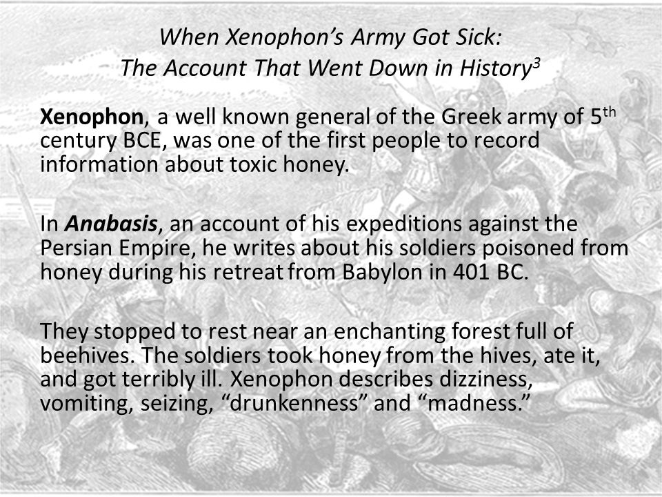 When Xenophon's Army Got Sick: The Account That Went Down in History 3 Xenophon, a well known general of the Greek army of 5 th century BCE, was one of the first people to record information about toxic honey.