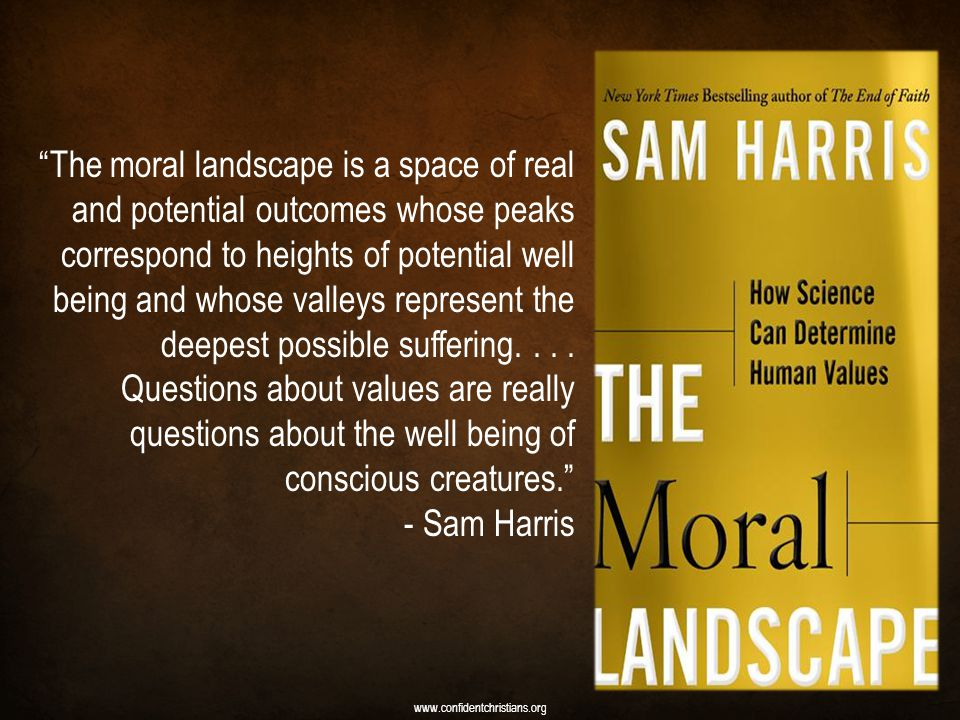 The moral landscape is a space of real and potential outcomes whose peaks correspond to heights of potential well being and whose valleys represent the deepest possible suffering....