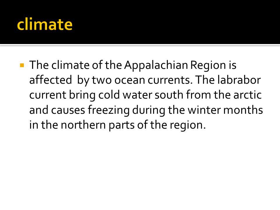  The Western Cordillera region runs along the west coast of North America.