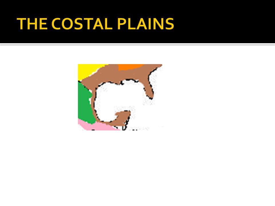  The coastal plains region starts at cape cod and runs all the way south to Florida.