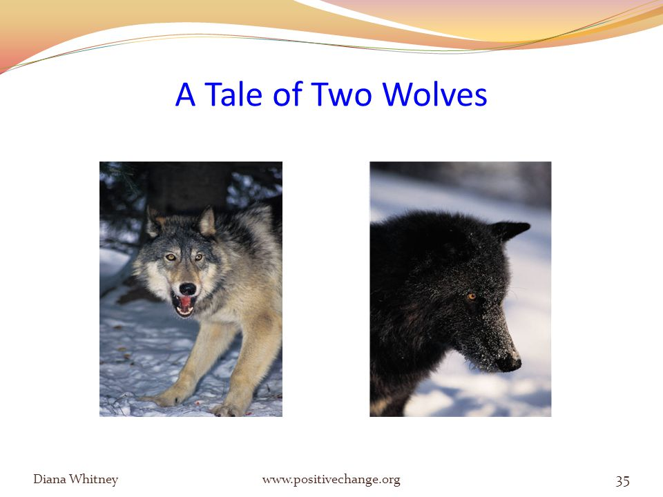 A Tale of Two Wolves Diana Whitney www.positivechange.org 35