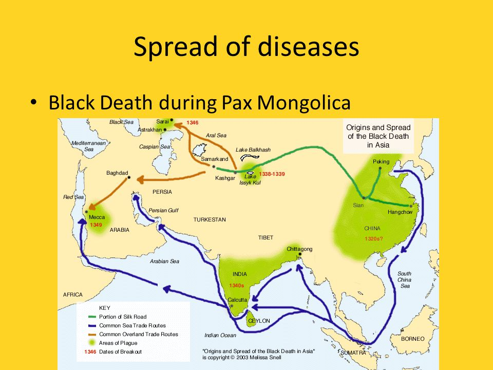 Spread of diseases Black Death during Pax Mongolica