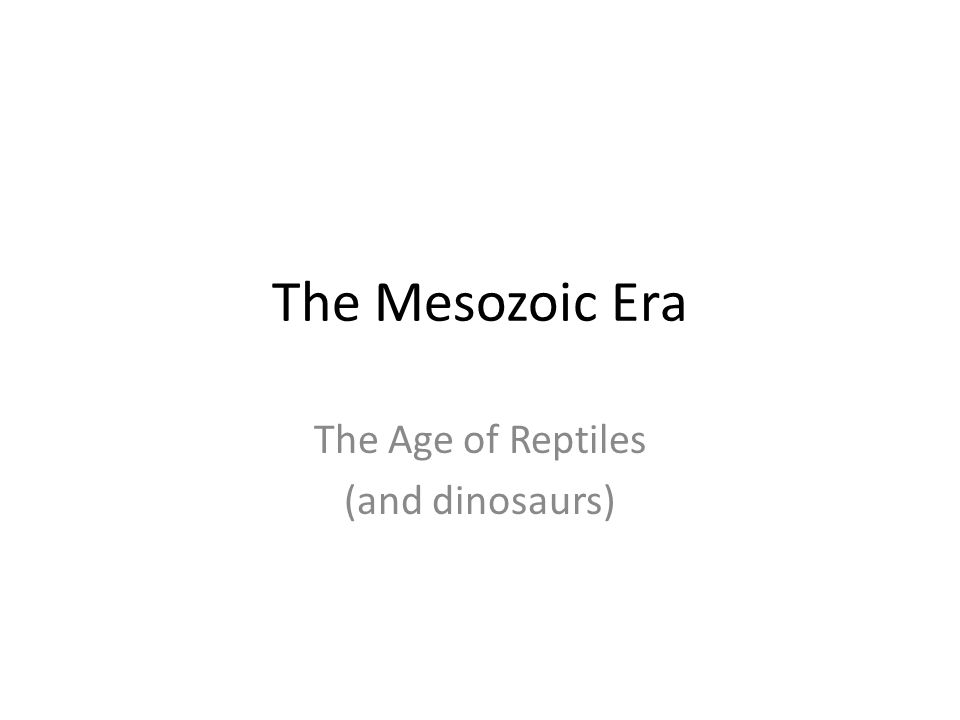 The Mesozoic Era The Age of Reptiles (and dinosaurs)