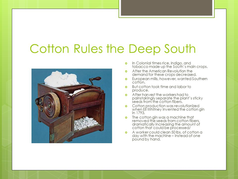 Cotton Rules the Deep South  In Colonial times rice, Indigo, and tobacco made up the South`s main crops.  After the American Revolution the demand f
