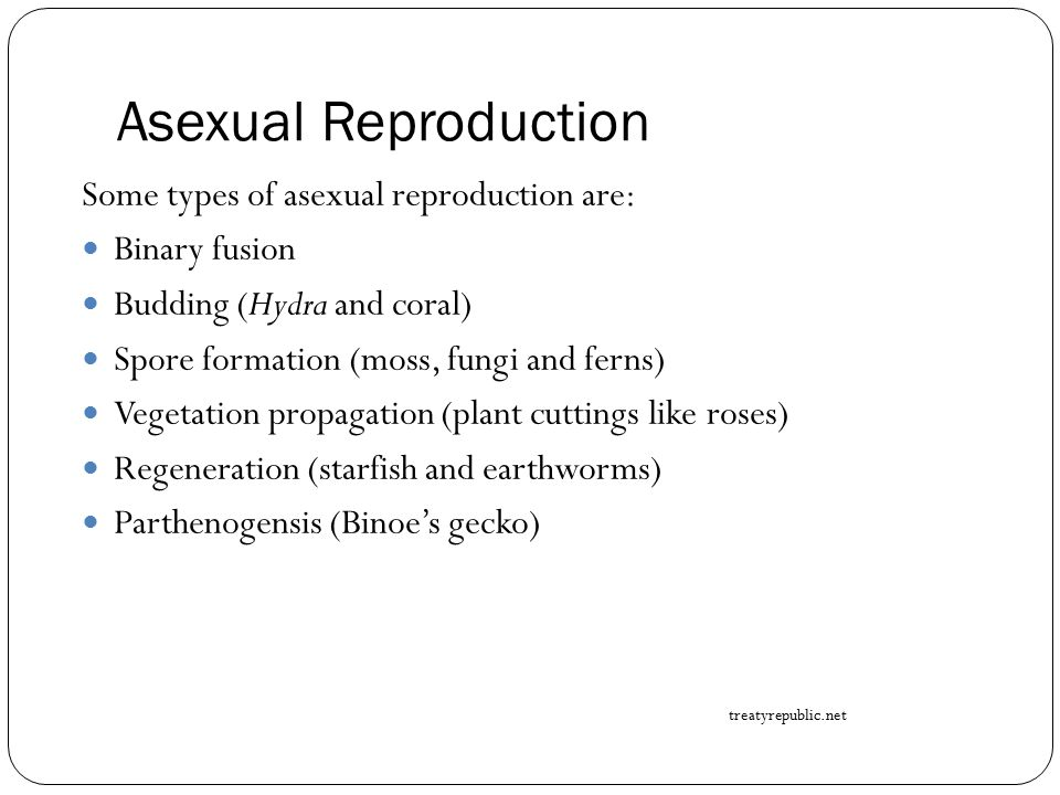 Asexual Reproduction Some types of asexual reproduction are: Binary fusion Budding (Hydra and coral) Spore formation (moss, fungi and ferns) Vegetatio