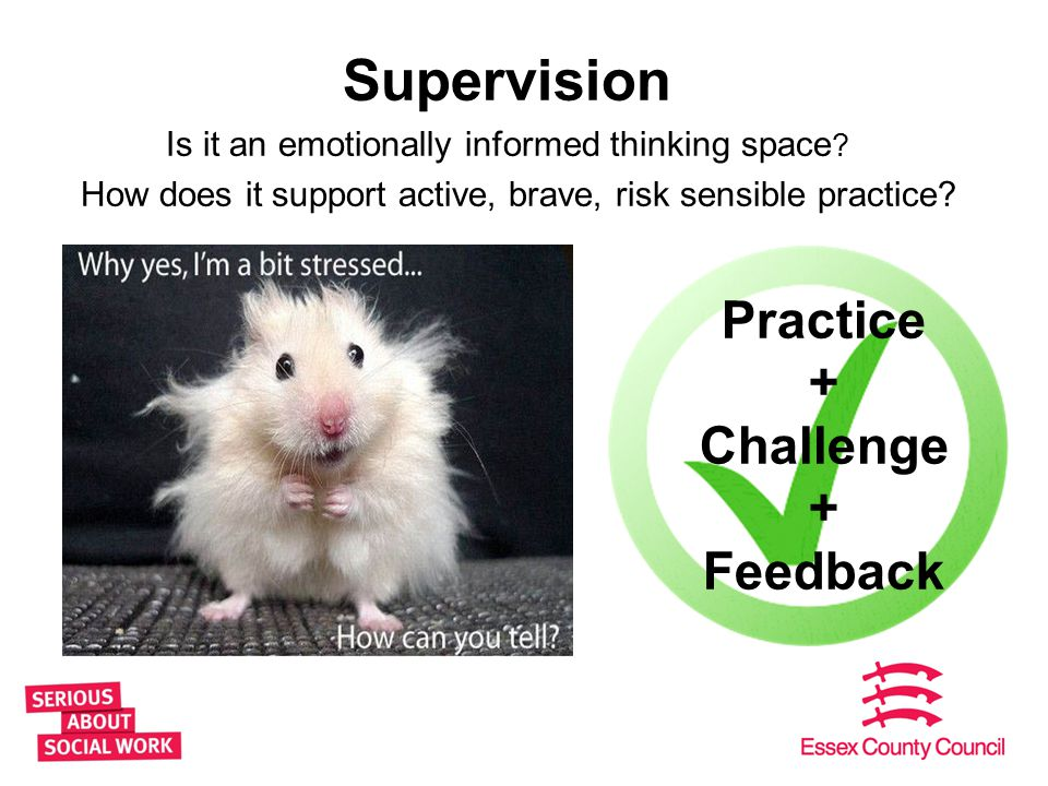 Supervision Is it an emotionally informed thinking space ? How does it support active, brave, risk sensible practice? 15 Practice + Challenge + Feedba