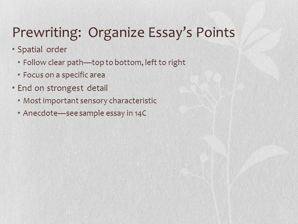 general essay review i parts of essay a introduction opening  14 prewriting organize essay s points spatial order follow clear path top to bottom left to right focus on a specific area end on strongest detail most