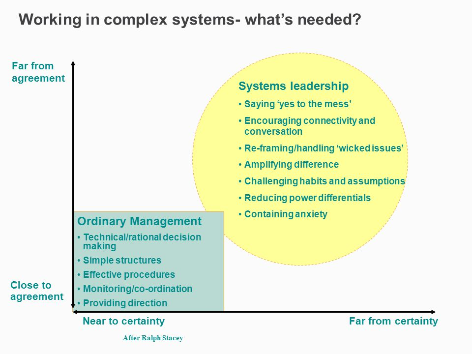 Systems leadership Saying 'yes to the mess' Encouraging connectivity and conversation Re-framing/handling 'wicked issues' Amplifying difference Challe