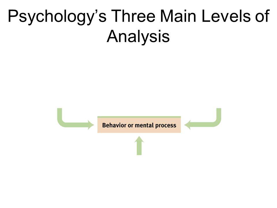 Psychology's Three Main Levels of Analysis