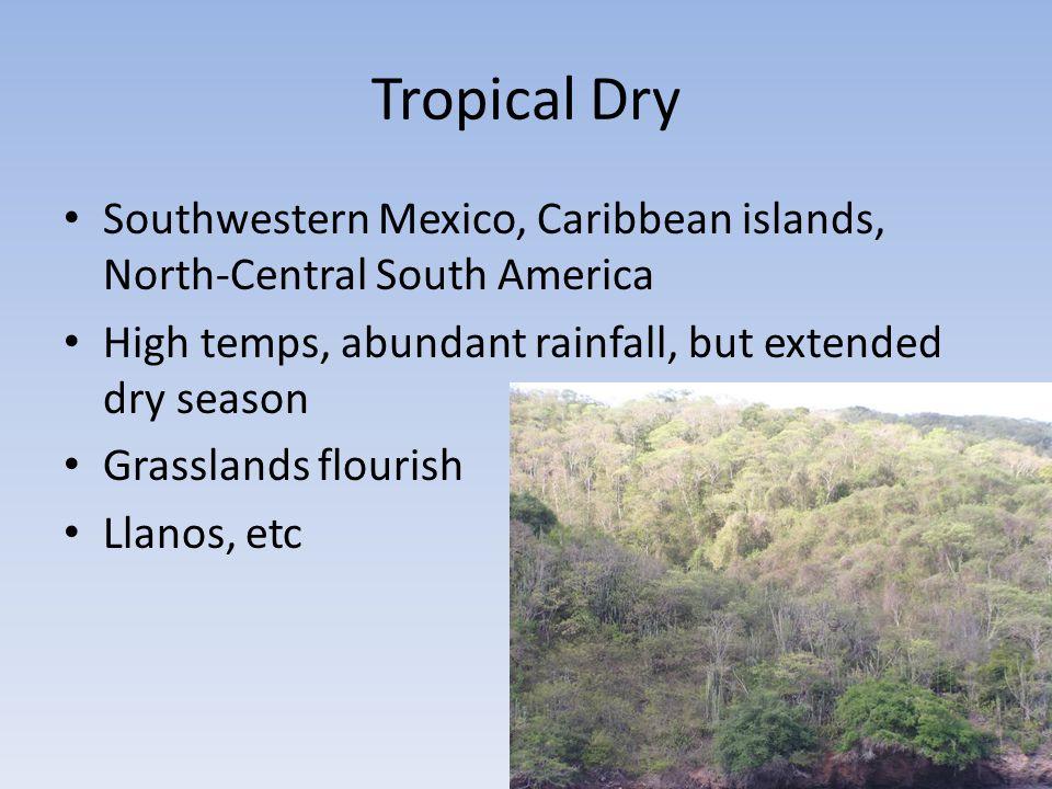 Tropical Dry Southwestern Mexico, Caribbean islands, North-Central South America High temps, abundant rainfall, but extended dry season Grasslands flourish Llanos, etc