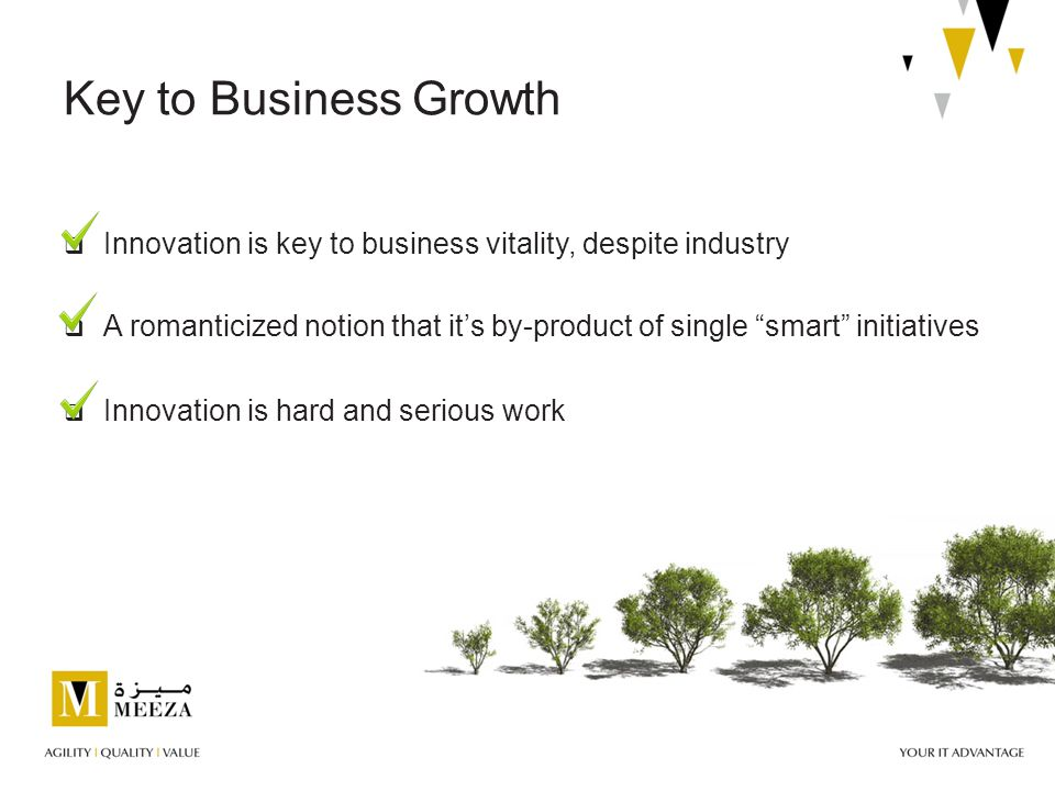  Innovation is hard and serious work  A romanticized notion that it's by-product of single smart initiatives Key to Business Growth  Innovation is key to business vitality, despite industry