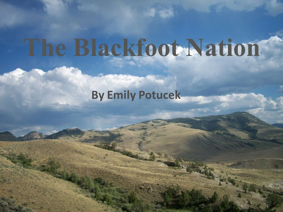 The Blackfoot Nation By Emily Potucek