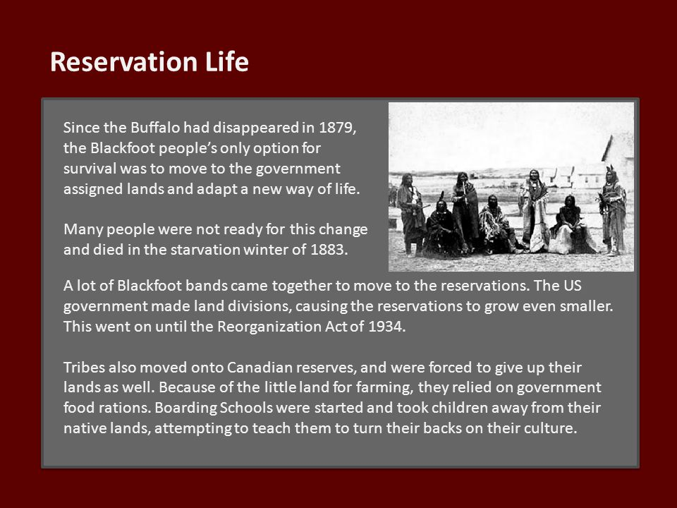 Reservation Life Since the Buffalo had disappeared in 1879, the Blackfoot people's only option for survival was to move to the government assigned lands and adapt a new way of life.