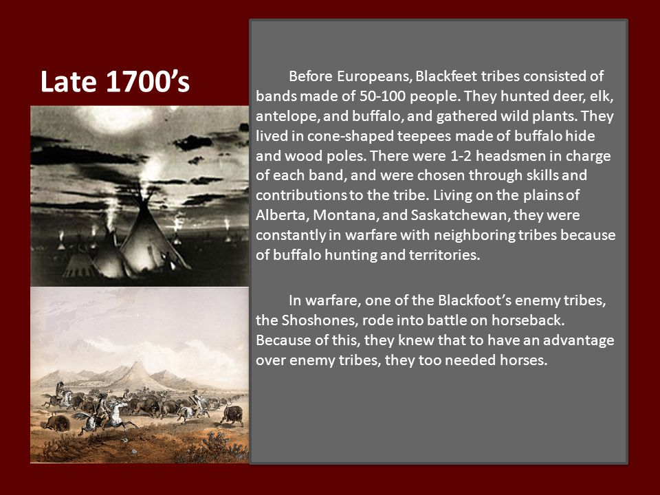Late 1700's Before Europeans, Blackfeet tribes consisted of bands made of 50-100 people.