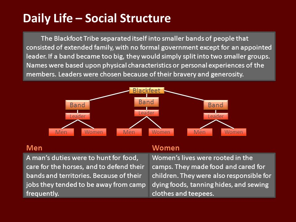 Daily Life – Social Structure The Blackfoot Tribe separated itself into smaller bands of people that consisted of extended family, with no formal government except for an appointed leader.