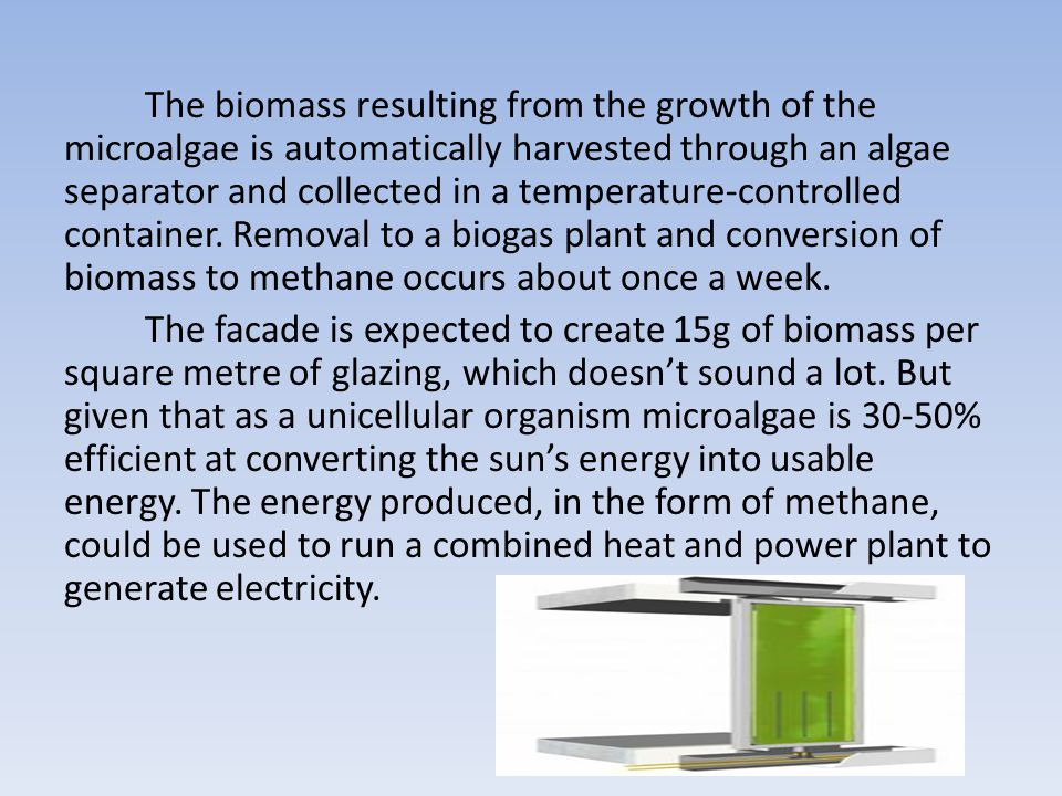 The biomass resulting from the growth of the microalgae is automatically harvested through an algae separator and collected in a temperature-controlled container.