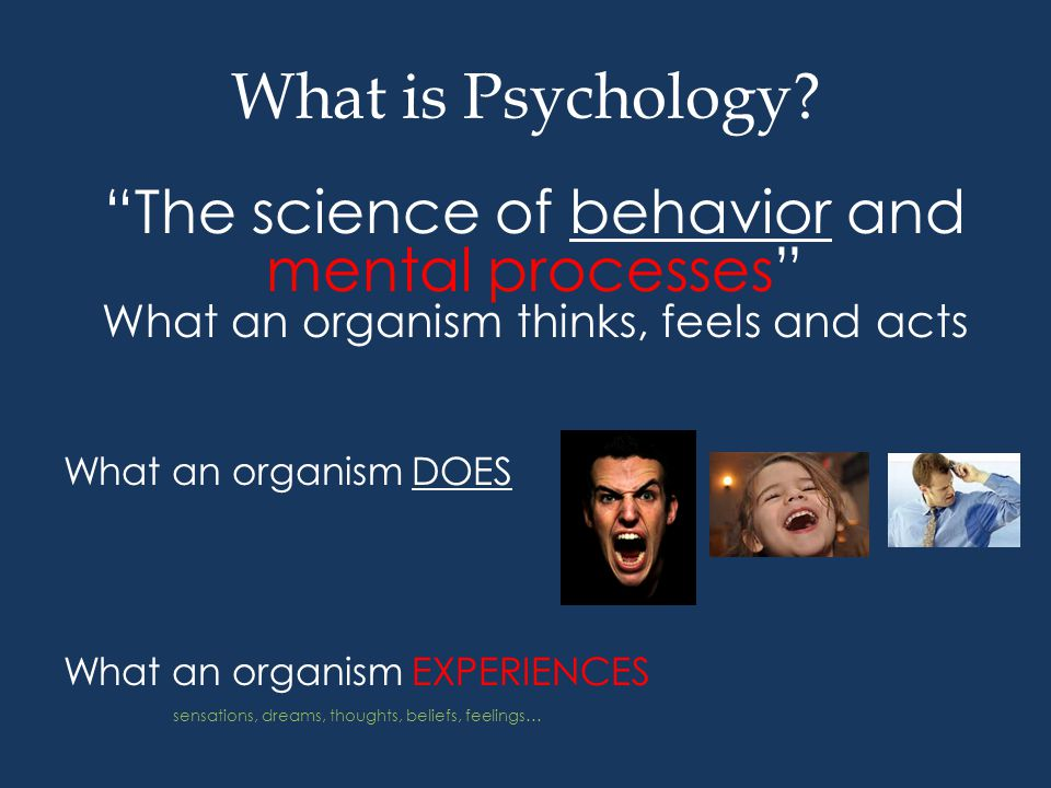 Perspectives Hand Mnemonic Psycho-dynamic Cognitive Behavioral Socio-Cultural Humanistic Evolutionary Neuroscience