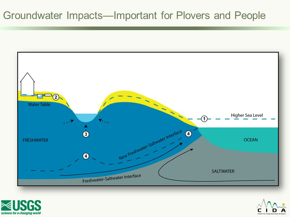 Sea-level rise impacts: A multivariate problem full of uncertainties Climate Change & Sea Level Rise Groundwater Impact Wetland Loss Coastal Erosion Inundation Safety Habitat Loss Physical & Biological Processes Potential Impacts Management Decisions Adaptation Planning Response Driving Forces Initial Conditions