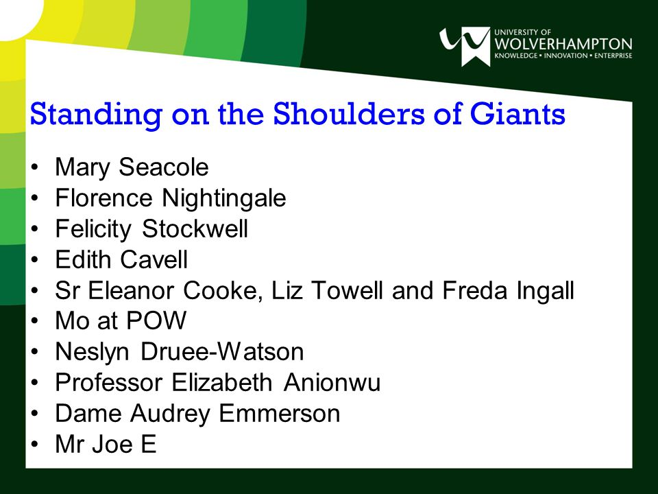 Standing on the Shoulders of Giants Mary Seacole Florence Nightingale Felicity Stockwell Edith Cavell Sr Eleanor Cooke, Liz Towell and Freda Ingall Mo at POW Neslyn Druee-Watson Professor Elizabeth Anionwu Dame Audrey Emmerson Mr Joe E
