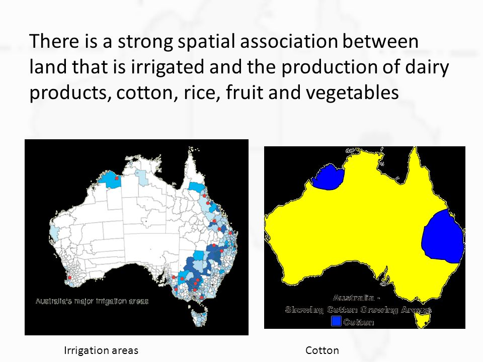 There is a strong spatial association between land that is irrigated and the production of dairy products, cotton, rice, fruit and vegetables Irrigati