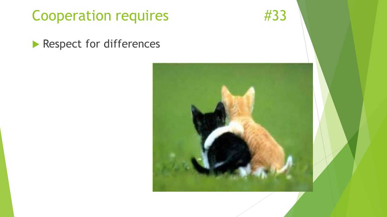 Cooperation requires#33  Respect for differences