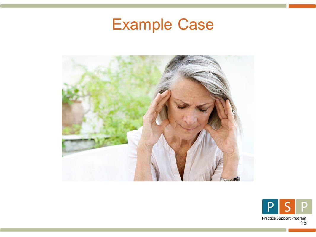 15 Example Case