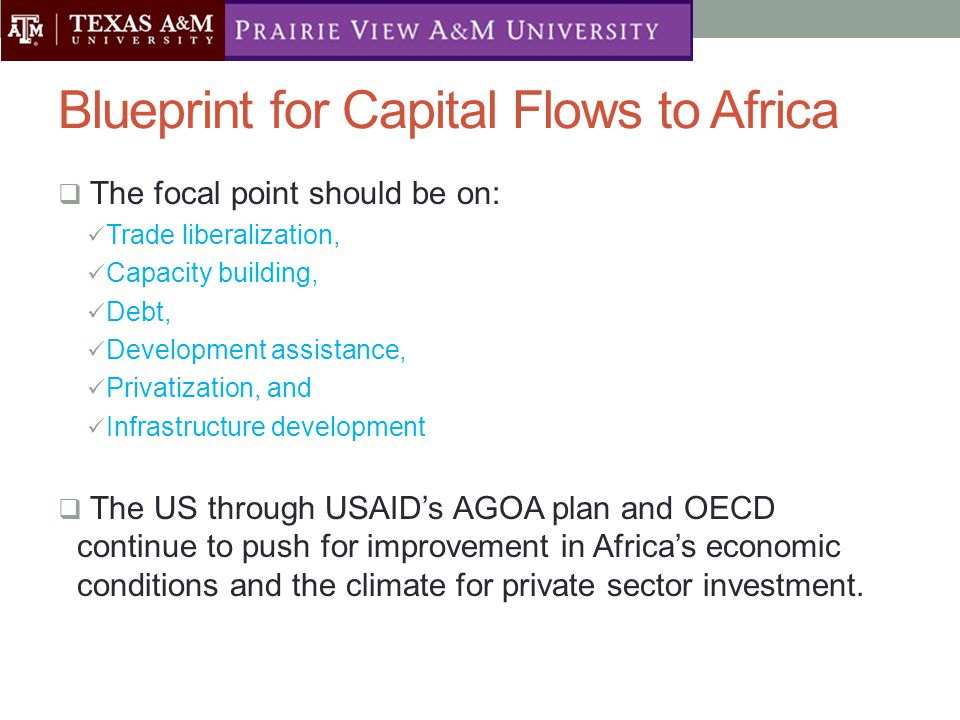 Blueprint for Capital Flows to Africa  The focal point should be on: Trade liberalization, Capacity building, Debt, Development assistance, Privatization, and Infrastructure development  The US through USAID's AGOA plan and OECD continue to push for improvement in Africa's economic conditions and the climate for private sector investment.