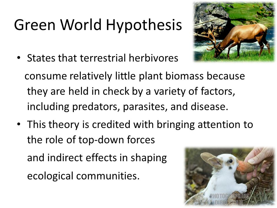 Plants Plants have defenses against herbivores such as noxious chemicals and spines.