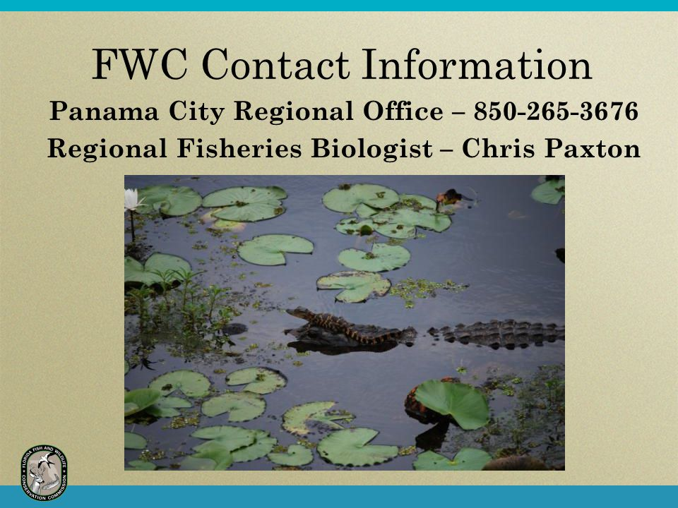 FWC Contact Information Panama City Regional Office – 850-265-3676 Regional Fisheries Biologist – Chris Paxton