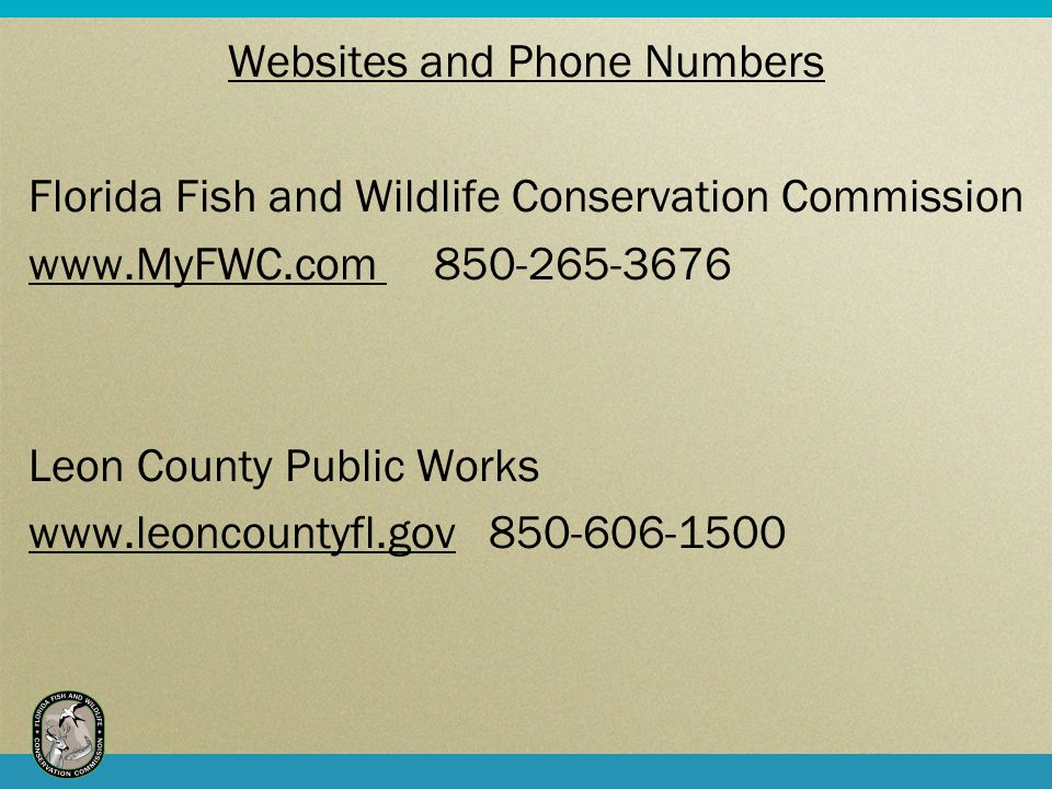Websites and Phone Numbers Florida Fish and Wildlife Conservation Commission www.MyFWC.com 850-265-3676 Leon County Public Works www.leoncountyfl.gov 850-606-1500