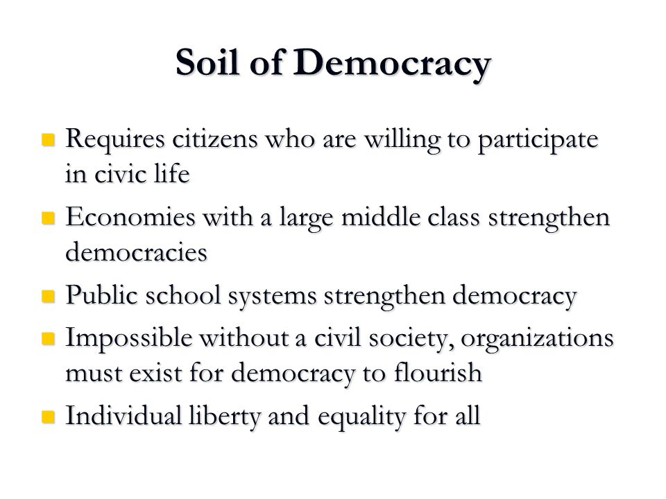 Soil of Democracy Requires citizens who are willing to participate in civic life Requires citizens who are willing to participate in civic life Econom