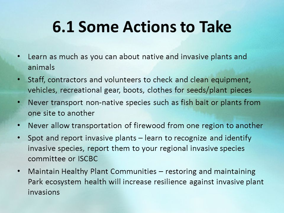 6.1 Some Actions to Take Learn as much as you can about native and invasive plants and animals Staff, contractors and volunteers to check and clean eq