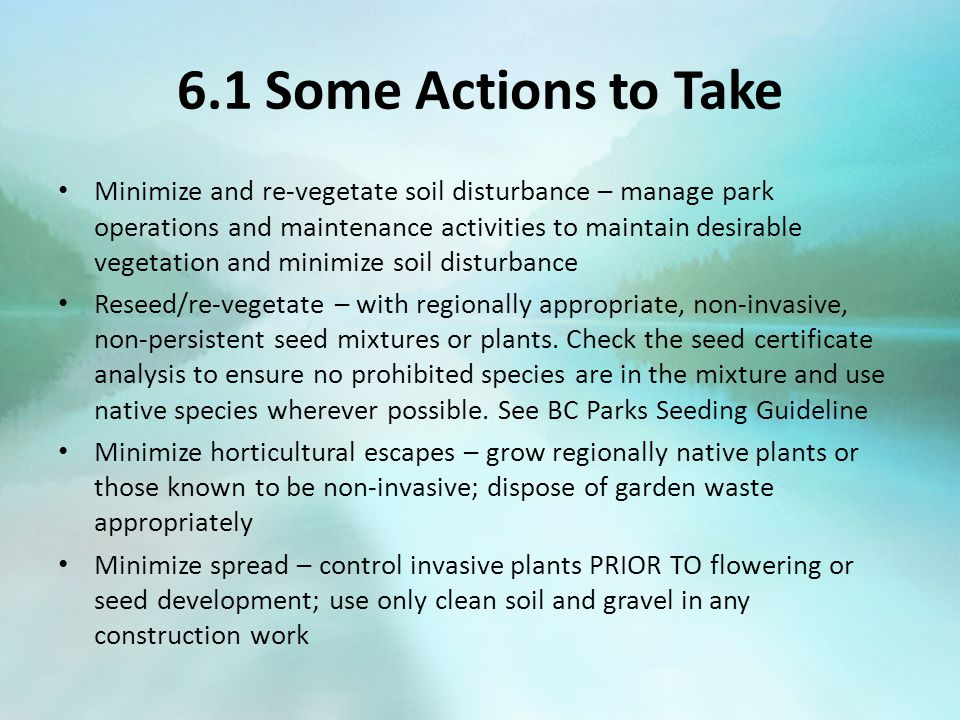 6.1 Some Actions to Take Minimize and re-vegetate soil disturbance – manage park operations and maintenance activities to maintain desirable vegetation and minimize soil disturbance Reseed/re-vegetate – with regionally appropriate, non-invasive, non-persistent seed mixtures or plants.