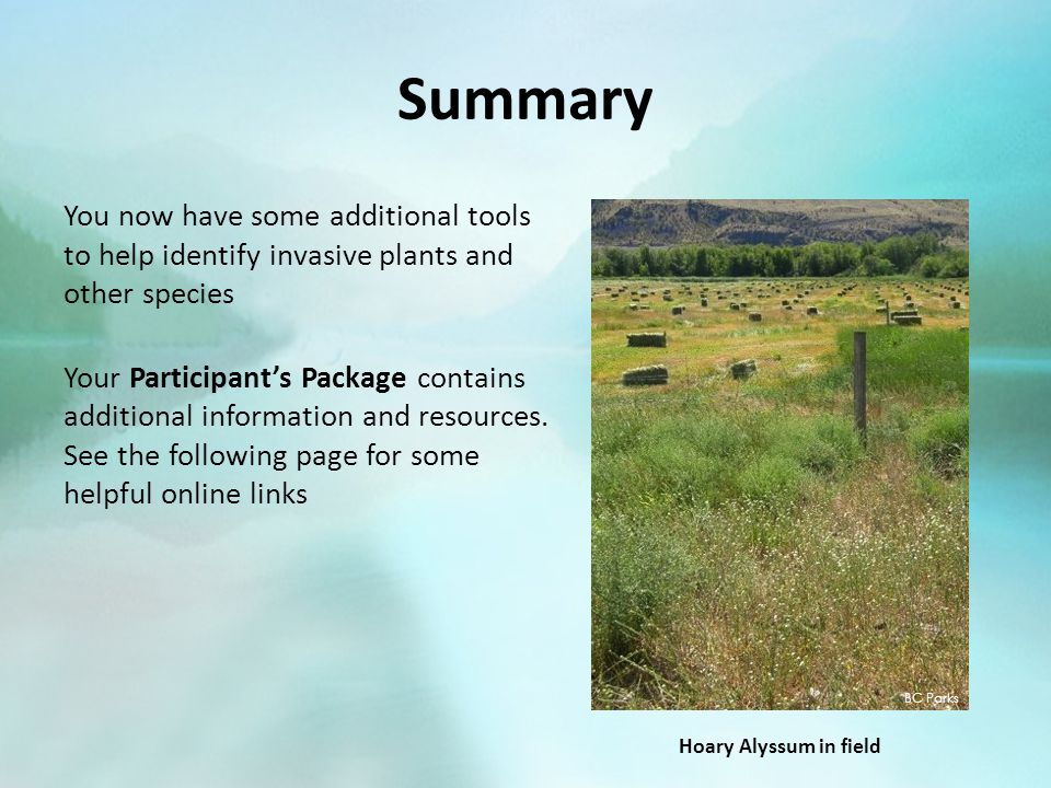 Summary You now have some additional tools to help identify invasive plants and other species Your Participant's Package contains additional informati