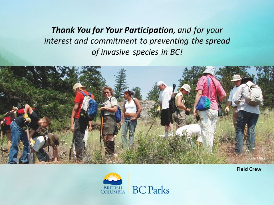 Thank You for Your Participation, and for your interest and commitment to preventing the spread of invasive species in BC! Field Crew Judy Millar