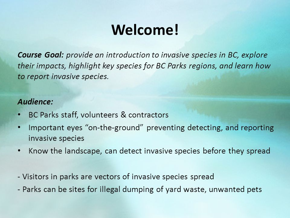 Invasive Species are Diverse There is a wide range of invasive species, including plants, insects, fish, mammals and birds in BC: Insects (e.g.