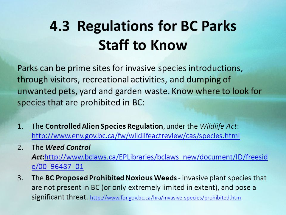 4.3 Regulations for BC Parks Staff to Know Parks can be prime sites for invasive species introductions, through visitors, recreational activities, and dumping of unwanted pets, yard and garden waste.