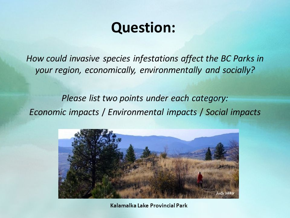 Question: How could invasive species infestations affect the BC Parks in your region, economically, environmentally and socially.