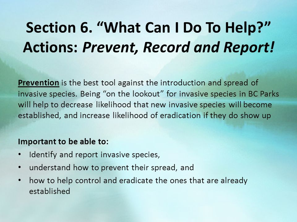 Section 6. What Can I Do To Help Actions: Prevent, Record and Report.