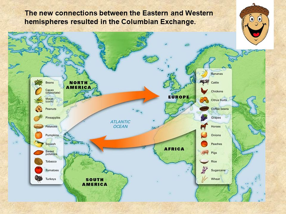 The new connections between the Eastern and Western hemispheres resulted in the Columbian Exchange.