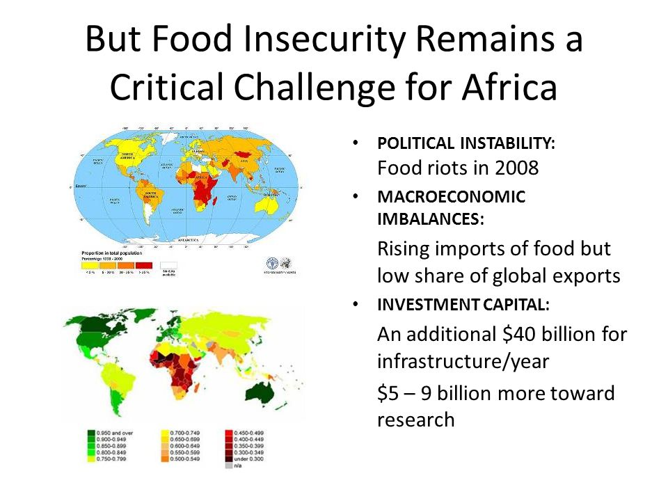 But Food Insecurity Remains a Critical Challenge for Africa POLITICAL INSTABILITY: Food riots in 2008 MACROECONOMIC IMBALANCES: Rising imports of food but low share of global exports INVESTMENT CAPITAL: An additional $40 billion for infrastructure/year $5 – 9 billion more toward research