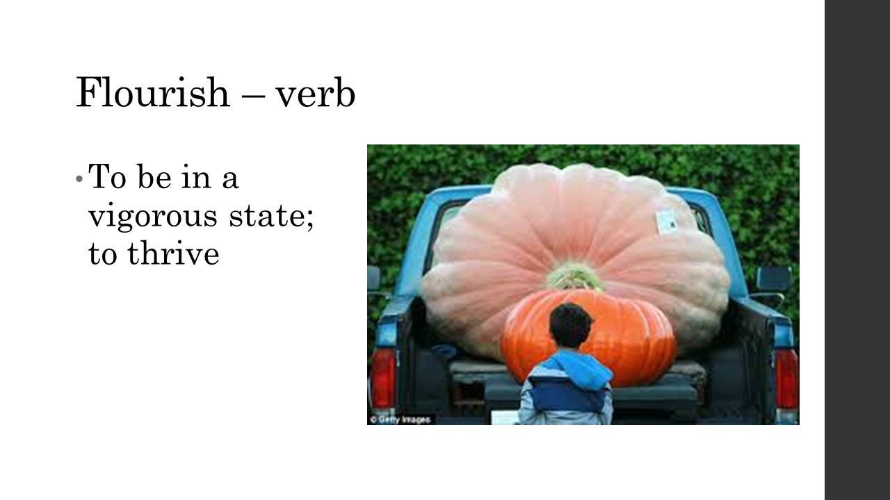 Flourish – verb To be in a vigorous state; to thrive
