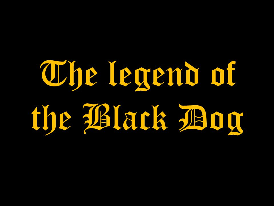 Elderly people say that the Castle in Podzamcze is haunted by huge black dog at night.