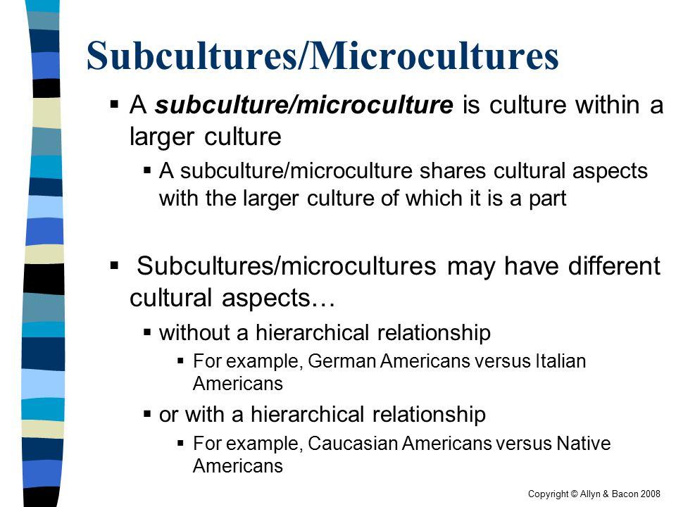 Copyright © Allyn & Bacon 2008 Subcultures/Microcultures  A subculture/microculture is culture within a larger culture  A subculture/microculture sh