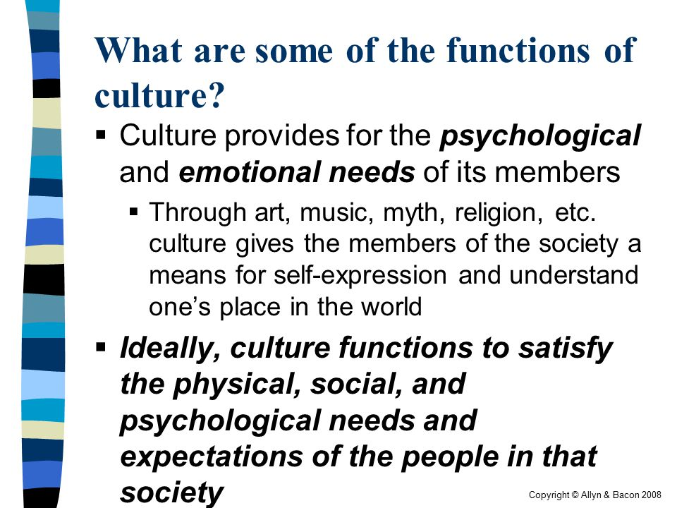 Copyright © Allyn & Bacon 2008 What are some of the functions of culture?  Culture provides for the psychological and emotional needs of its members