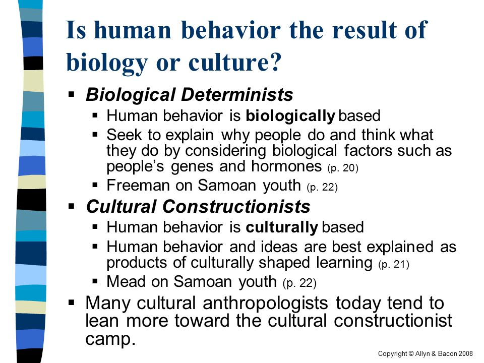 Copyright © Allyn & Bacon 2008 Is human behavior the result of biology or culture?  Biological Determinists  Human behavior is biologically based 