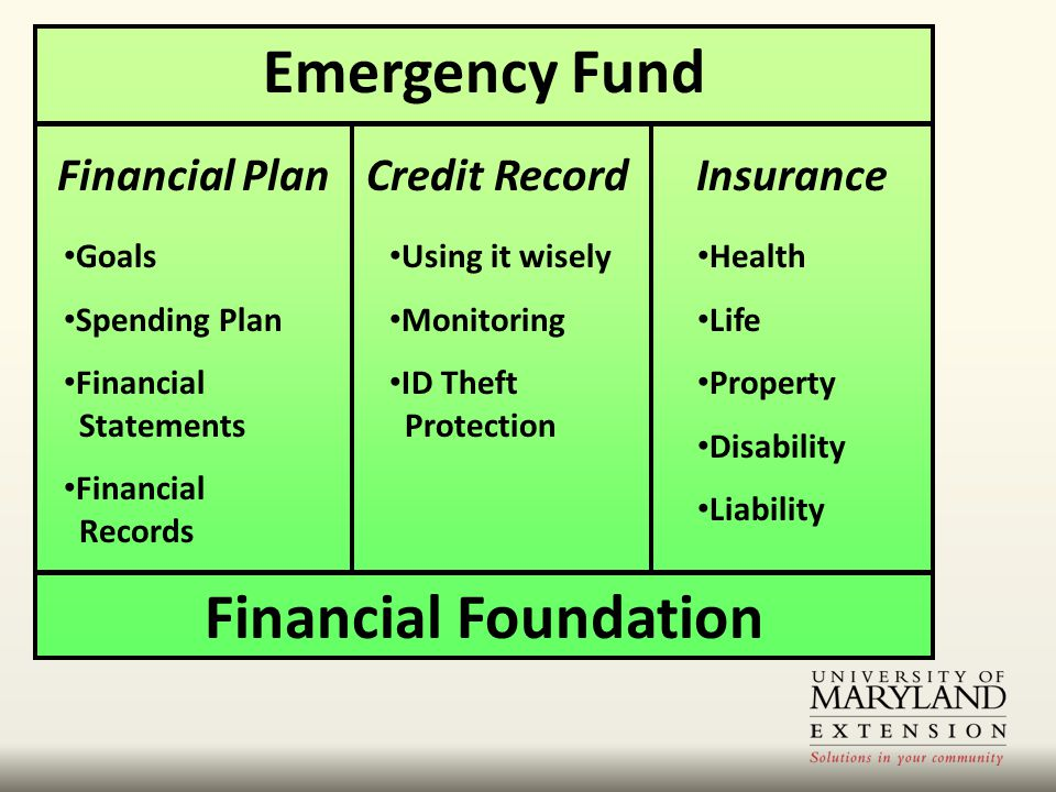 Emergency Fund Financial PlanCredit Record Health Life Property Disability Liability Insurance Financial Foundation Goals Spending Plan Financial Statements Financial Records Using it wisely Monitoring ID Theft Protection