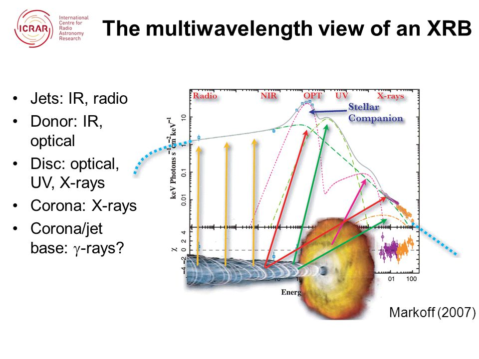 The multiwavelength view of an XRB Markoff (2007) Jets: IR, radio Donor: IR, optical Disc: optical, UV, X-rays Corona: X-rays Corona/jet base:  -rays?